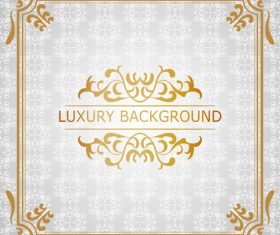 White luxury background with golden frame vector