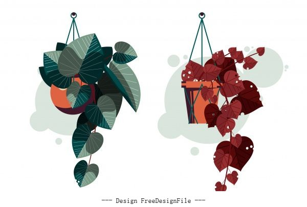 Decorative houseplant icons hanging colored vector