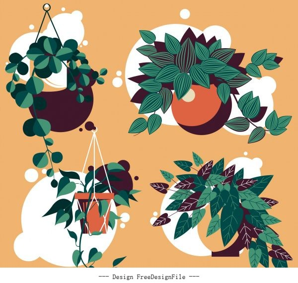 Decorative houseplant icons leaves colored classical vector