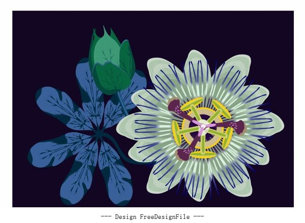 Flora background colored dark flat vector