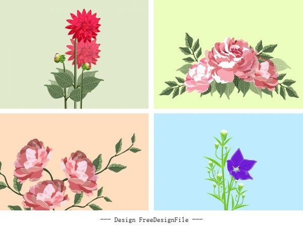 Flower backgrounds colorful blooming vector