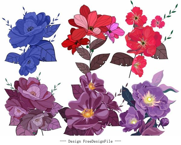 Flowers icons colored classical vector