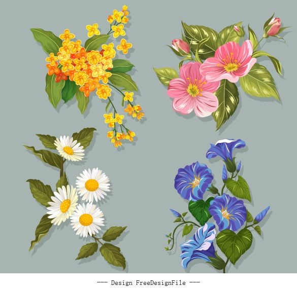 Flowers icons colorful blooming vector