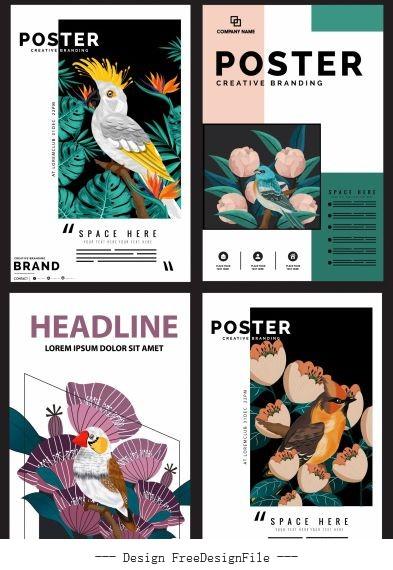 Nature posters templates flora birds species decor design vectors