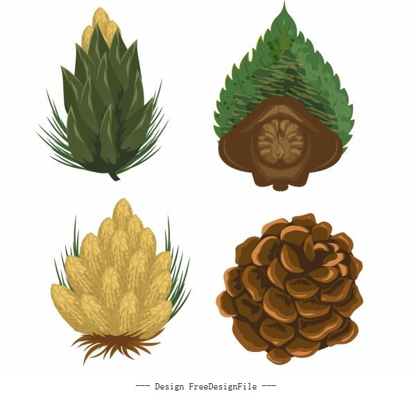 Pine cone icons colored set vector