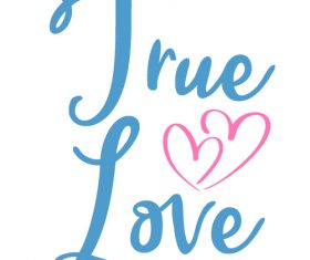 True love valentine day greeting card vector