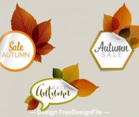 Autumn sale sticker icon vector