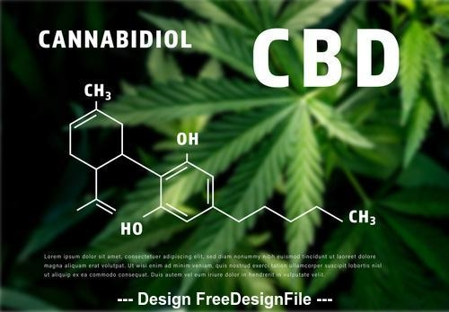 CBD oil infographic with molecular formula illustrations vector