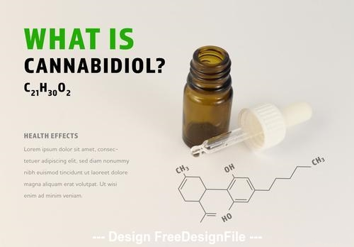Cannabidiol oil infographic with oil dropper vector