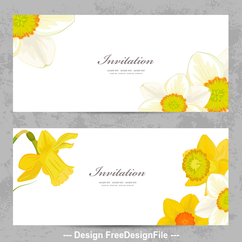 Decorative daffodil background card vector