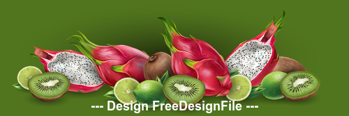 Dragon fruit and kiwi banner vector