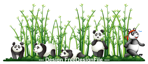 Panda playing in the bamboo forest vector