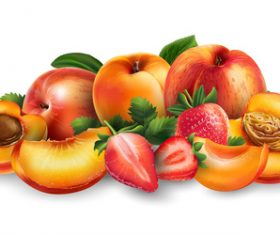 Peach and apple banner vector