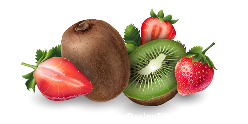 Strawberry and kiwi banner vector
