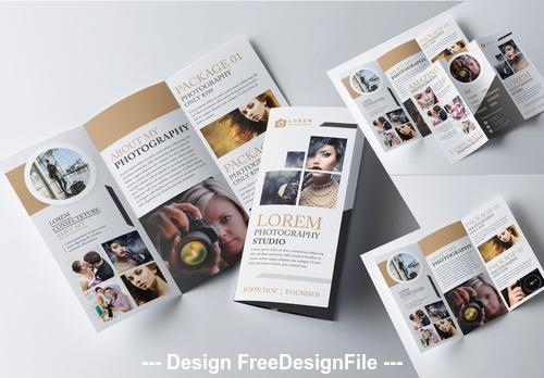 Tri fold brochure layout with gold vector