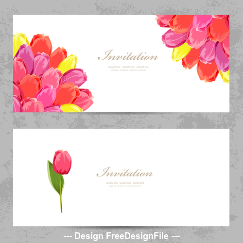 Tulip flowers card vector