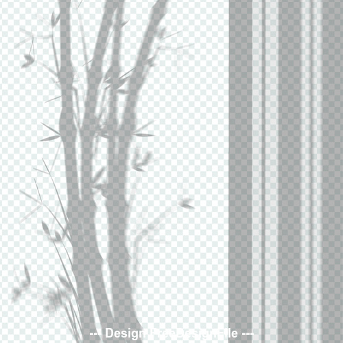 Bamboo transparent shadow effect vector