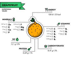 Grapefruit nutritional Information vector