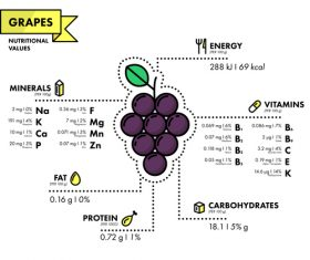 Grapes nutritional Information vector