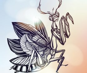 Hand drawn mantis icon vector