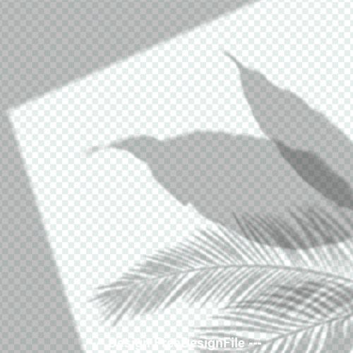 Leaf shadow effect vector