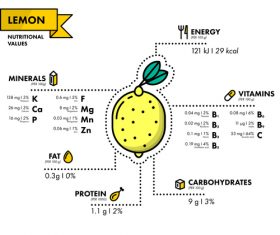 Lemon nutritional Information vector