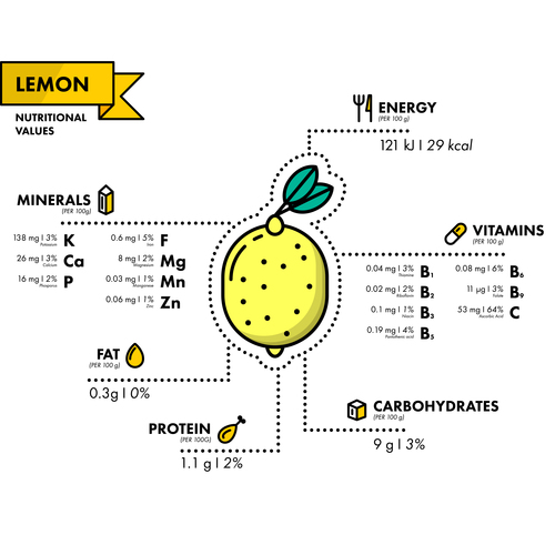 Lemon nutritional Information vector