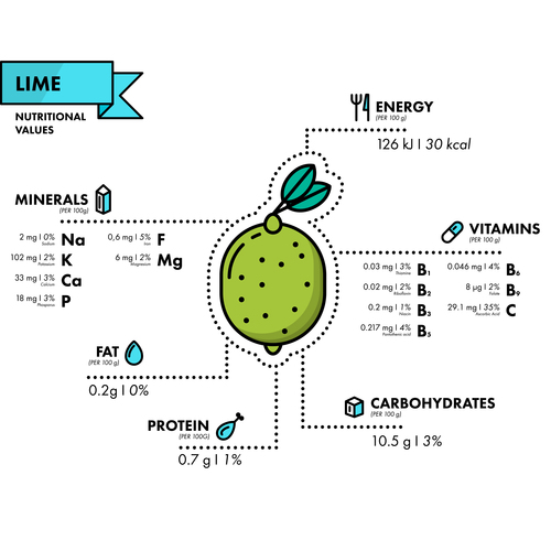 Lime nutritional Information vector
