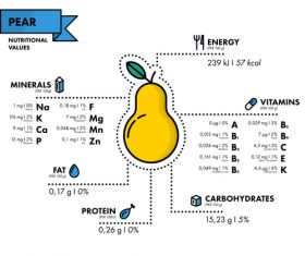 Pear nutritional Information vector