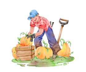 Pumpkin Harvest cartoon illustration vector