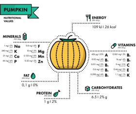 Pumpkin nutritional Information vector