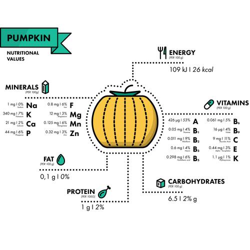 Pumpkin nutritional Information vector