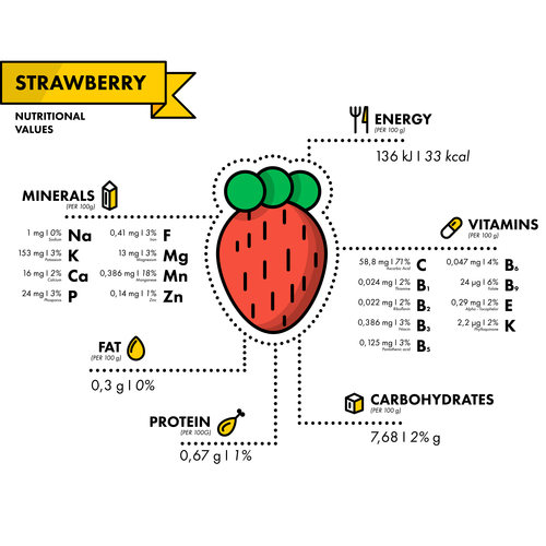 Strawberry nutritional Information vector