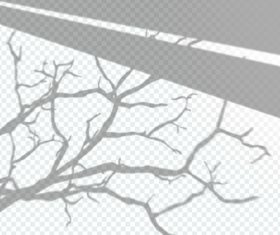 Transparent window shadow tree effect vector