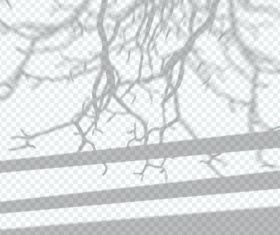 Tree branch transparent shadow effect vector