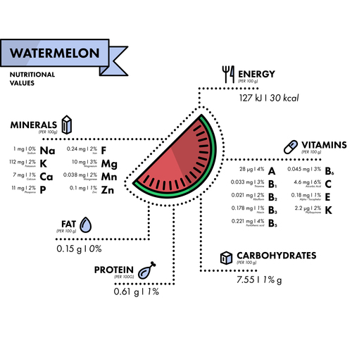 Watermelon nutritional Information vector