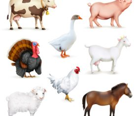 Animals and birds farm set of vector icons