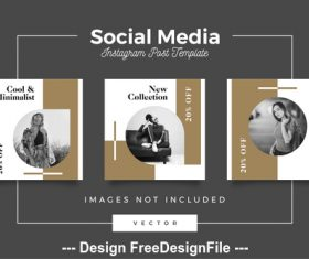 Business social media template vector
