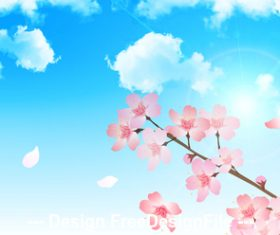 Closeup cherry blossom illustration vector