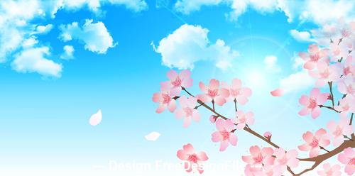 Closeup cherry blossom illustration vector