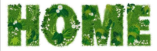 Home floral letters vector