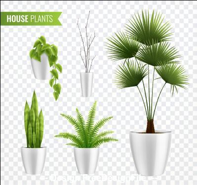 House farming plants vector illustrations