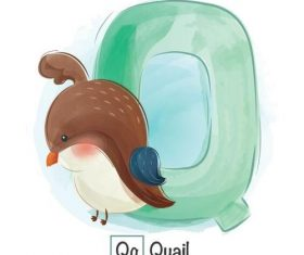 Look at the picture literacy Q letter vector