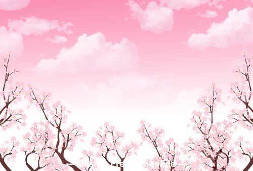 Pink background cherry blossom vector