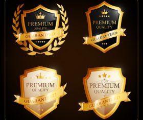 Shield label background vector