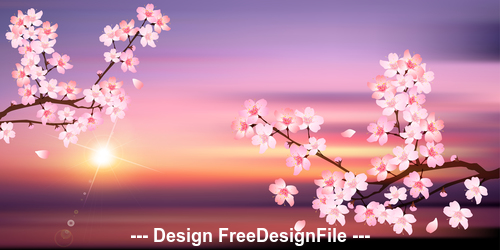 Sunrise and cherry blossom vector