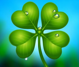 Clover and water drops background vector