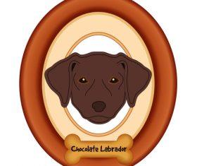 Labrador chocolate portrait vector