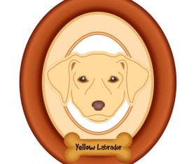 Labrador yellow portrait vector