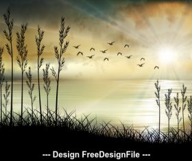 Sea coast beautiful illustrations vector